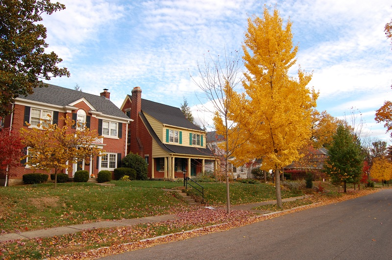 5 Things To Put on Your Fall HVAC Maintenance List
